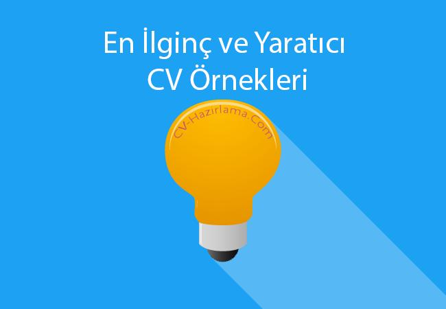 CV, İlginç CV Örnekleri, Yaratıcı Cv Örneği, Hazır CVler, Özgeçmiş Yazımı, Özgeçmiş Örnekleri CV Formu