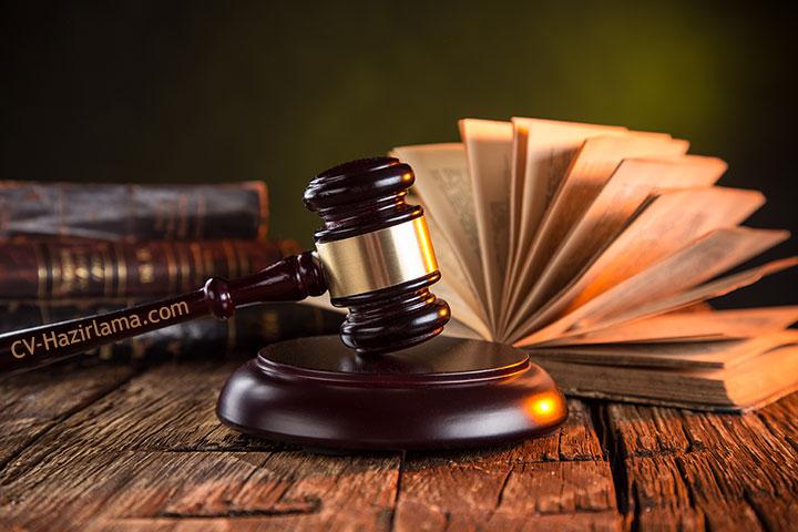 avukat cv ornekleri