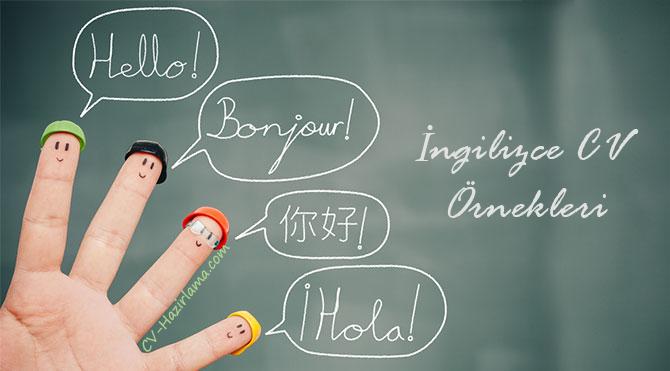 İngilizce CV Örnekleri